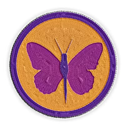 metamorphosis merit badge