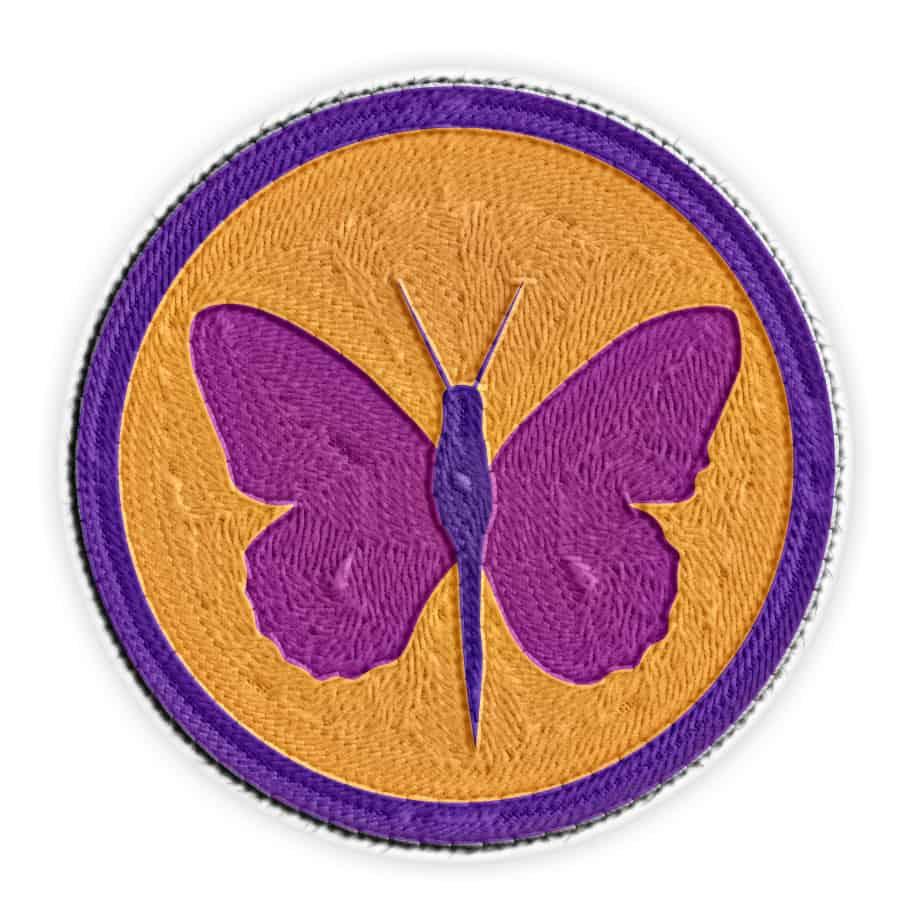 metamorphosis merit badge